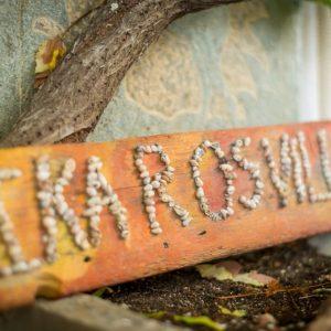 Ikaros 2